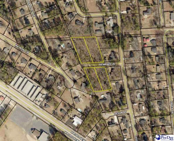 Kewanee, Hartsville, SC 29550 (MLS #20212377) :: Crosson and Co