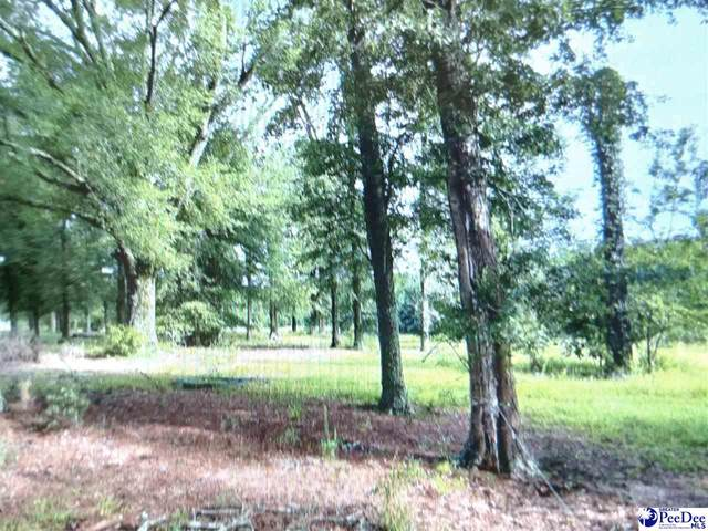 250 West Canal Rd, Sellers, SC 29592 (MLS #20212389) :: The Latimore Group