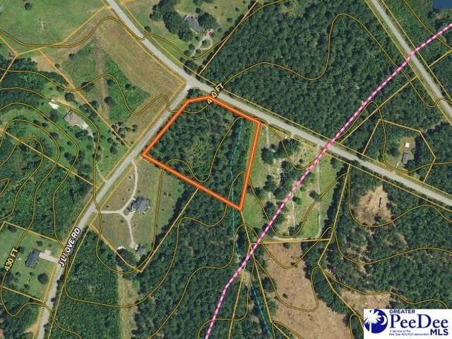 Corner Ogburn Rd & Jl Love Rd, Jefferson, SC 29781 (MLS #20212432) :: Crosson and Co