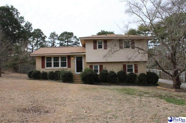 1021 Pineneedle Rd, Hartsville, SC 29550 (MLS #20212526) :: Crosson and Co