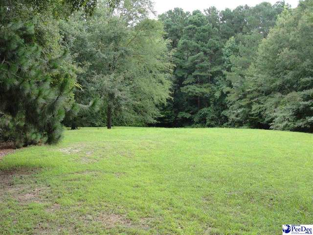 732 Lakeshore Dr, Bennettsville, SC 29512 (MLS #20212530) :: Coldwell Banker McMillan and Associates