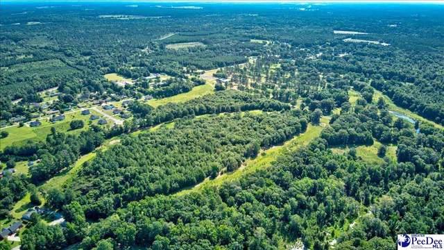 26.5 Acres Mciver Road, Darlington, SC 29532 (MLS #20212560) :: The Latimore Group