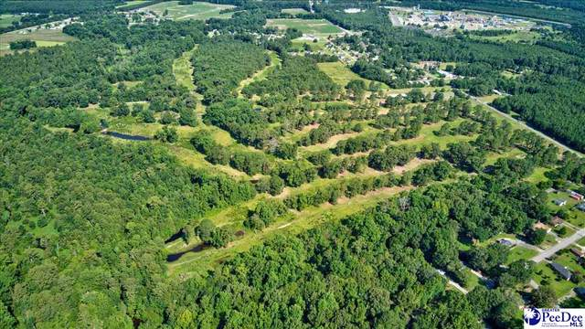 37.5 Acres Mciver Road, Darlington, SC 29532 (MLS #20212562) :: The Latimore Group