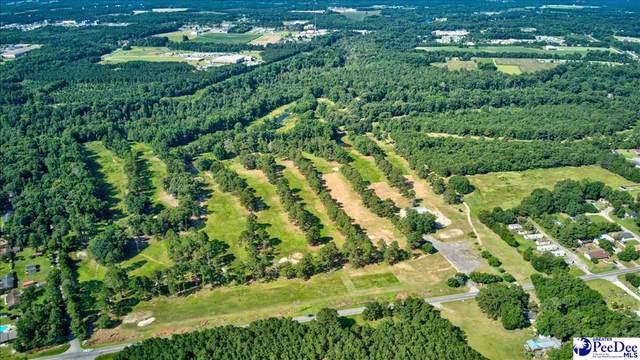 164 Acres Mciver Road, Darlington, SC 29532 (MLS #20212563) :: The Latimore Group