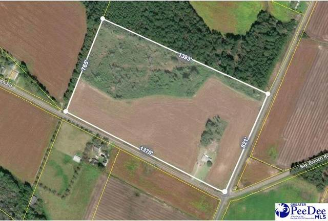 1046 Bay Branch Road, Lamar, SC 29069 (MLS #20212578) :: Coldwell Banker McMillan and Associates