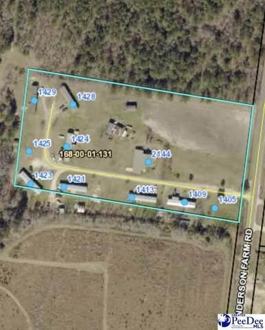 2144 Anderson Farm Rd, Darlington, SC 29532 (MLS #20212583) :: The Latimore Group