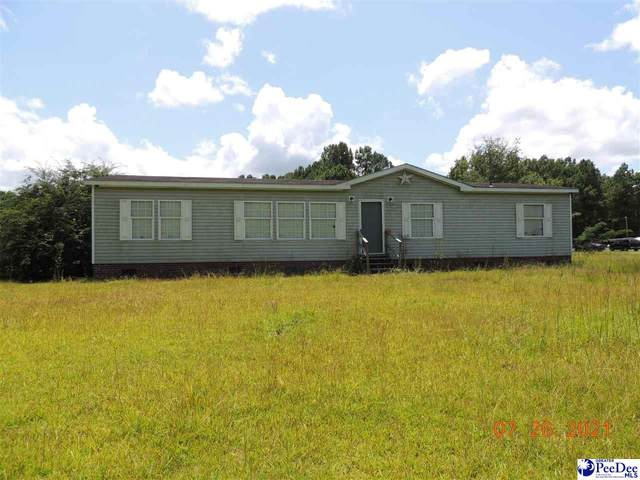 125 Louise Miles Road, Marion, SC 29571 (MLS #20212610) :: Crosson and Co