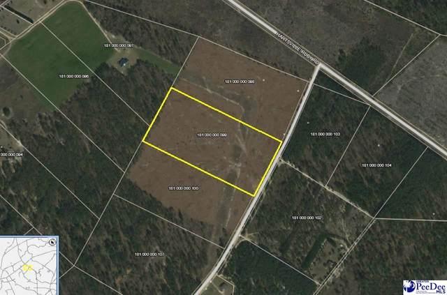 116 Scott Pond Rd, Patrick, SC 29550 (MLS #20212613) :: Crosson and Co