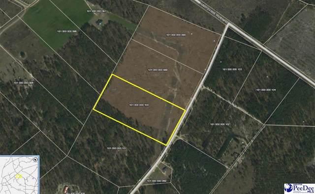 254 Scott Pond Rd, Patrick, SC 29550 (MLS #20212614) :: Crosson and Co