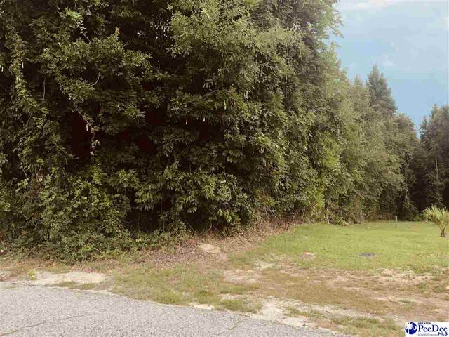 300 E Rico Dr., Florence, SC 29505 (MLS #20212616) :: The Latimore Group