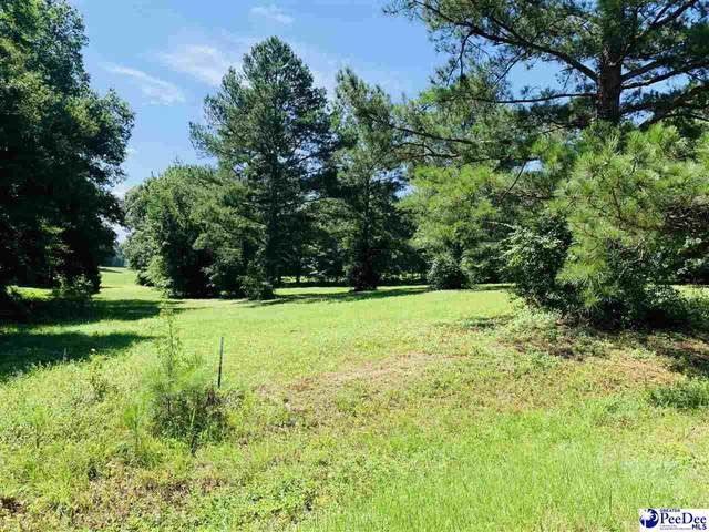 Richardson Trail-Lot 2, Chesterfield, SC 29709 (MLS #20212677) :: Crosson and Co