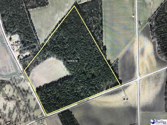 TBD High Hill Road, Lake View, SC 29563 (MLS #20212694) :: Crosson and Co