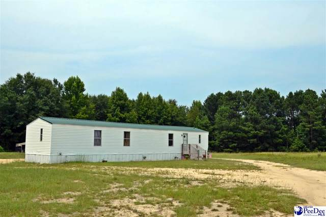 102 Southern Lane, Mcbee, SC 29101 (MLS #20212768) :: Crosson and Co