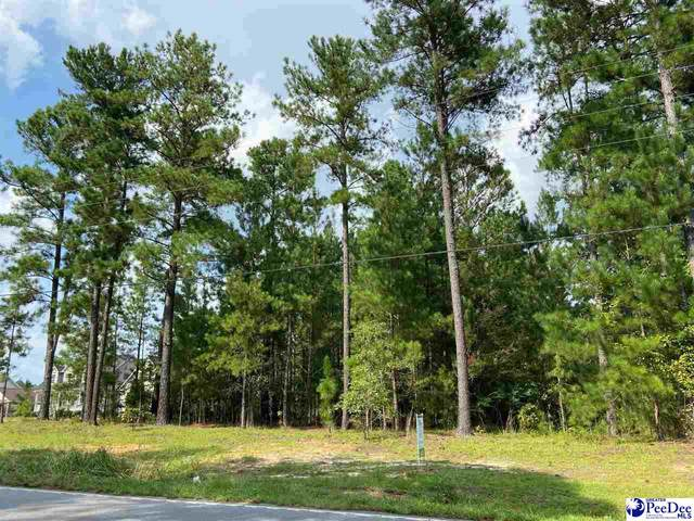 1 Ruby Road, Hartsville, SC 29550 (MLS #20212832) :: Crosson and Co