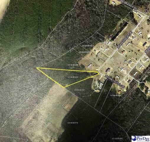 TBD Branchside Circle, Lake View, SC 29563 (MLS #20212857) :: Crosson and Co