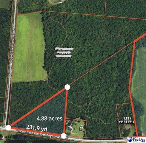 5531 Stagecoach Rd, Effingham, SC 29541 (MLS #20212877) :: Crosson and Co