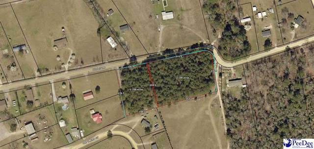 TBD Dudley, Lamar, SC 29069 (MLS #20212889) :: Crosson and Co