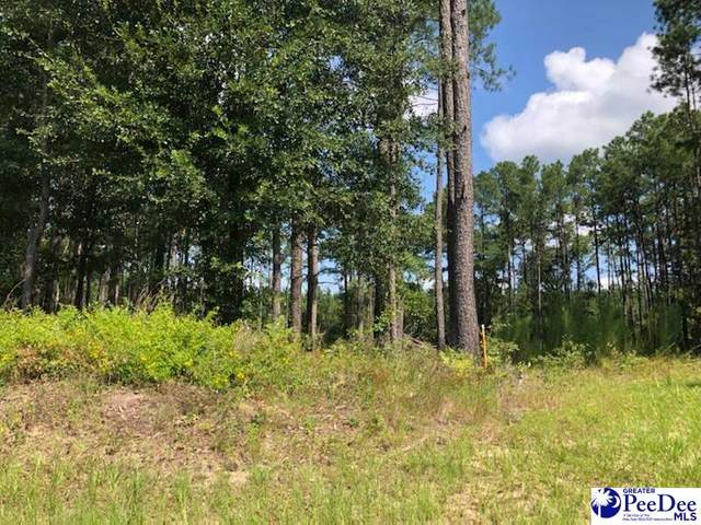 Lot 1 Wildwood Ct, Hartsville, SC 29550 (MLS #20212901) :: Crosson and Co