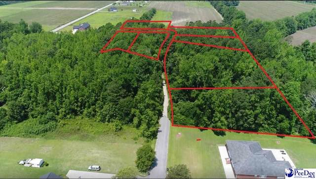 6 lots Plantation Dr, Marion, SC 29571 (MLS #20212912) :: Crosson and Co