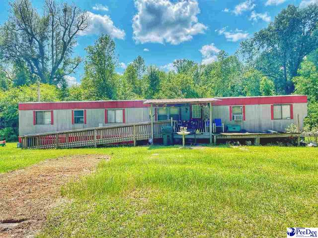 1723 Joanne Branch Road, Lake View, SC 29563 (MLS #20213025) :: Crosson and Co