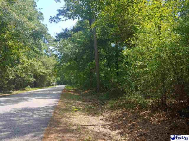 TBD Byrnes Blvd, Florence, SC 29506 (MLS #20213028) :: Coldwell Banker McMillan and Associates