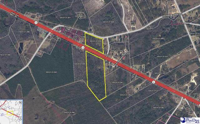 Highway 9, Walllace, SC 29596 (MLS #20213049) :: Crosson and Co