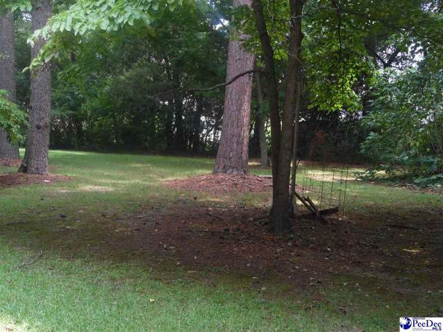 303 Creek Drive, Florence, SC 29506 (MLS #20213119) :: Crosson and Co