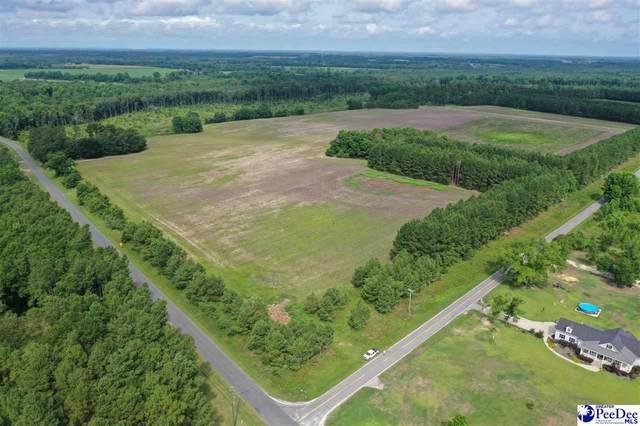 19.83 Acres Sandbox Rd, Lamar, SC 29069 (MLS #20213202) :: Crosson and Co