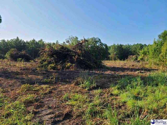 TBD Timmons Rd, Timmonsville, SC 29161 (MLS #20213256) :: Crosson and Co