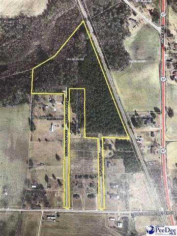 Stone Court & Rocky Place, Dillon, SC 29536 (MLS #20213362) :: Crosson and Co