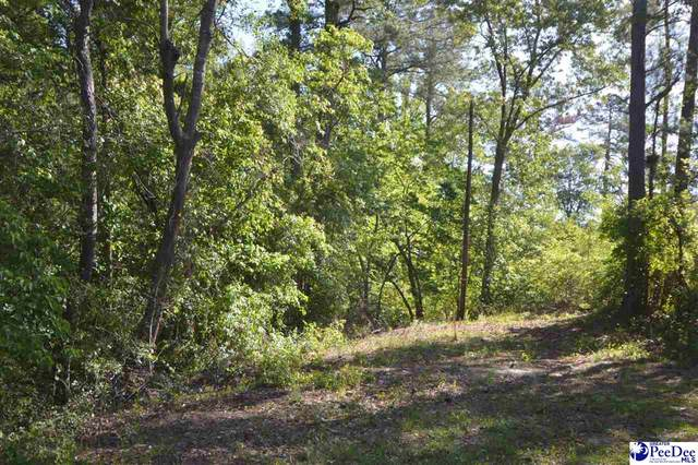 3.5 acres Sail Club Road, Hartsville, SC 29550 (MLS #20213403) :: Crosson and Co