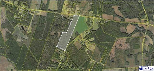 4226 Claussen Road, Florence, SC 29505 (MLS #20213430) :: Crosson and Co