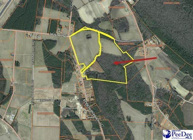 Rupert Smith Rd., Mullins, SC 29574 (MLS #20213493) :: Crosson and Co