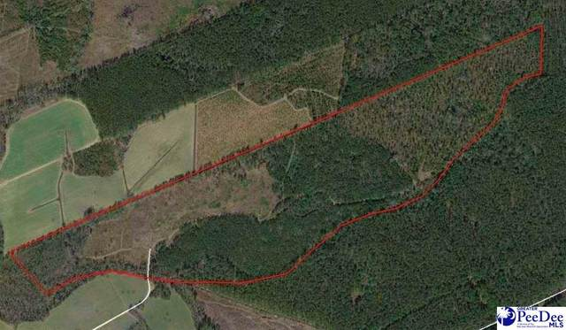 TBD Timmons Rd, Effingham, SC 29541 (MLS #20213674) :: Crosson and Co