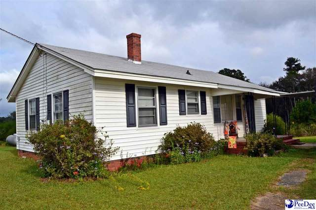 547 Turnage Street, Patrick, SC 29584 (MLS #20213677) :: Crosson and Co