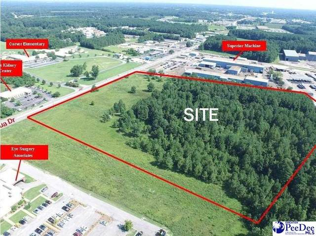 500 N Cashua Drive, Florence, SC 29501 (MLS #20213682) :: Crosson and Co