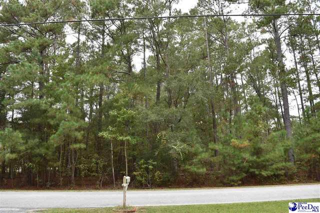 1.48 Acres Farmingdale Road, Florence, SC 29505 (MLS #20213746) :: Crosson and Co