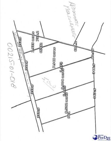 TBD Willard Henry Rd., Florence, SC 29505 (MLS #20213756) :: Crosson and Co