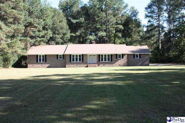 33944 County Line Rd, Hemingway, SC 29554 (MLS #20213798) :: Crosson and Co