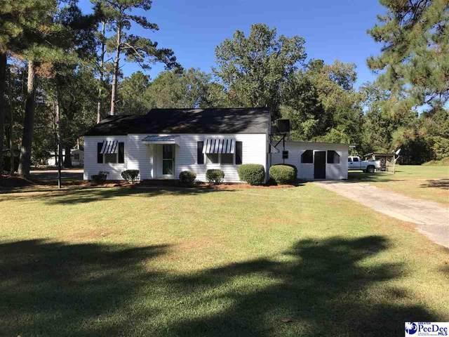 1347 Allison Landing Rd, Johnsonville, SC 29555 (MLS #20213883) :: The Latimore Group