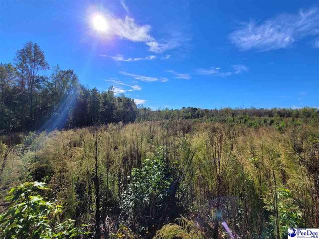 388 Shea Hill Road, Chesterfield, SC 29709 (MLS #20213895) :: Crosson and Co