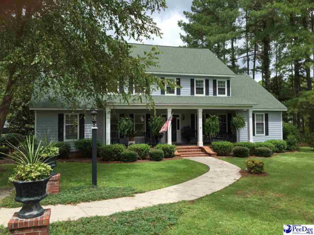 111 Virginia Drive, Darlington, SC 29532 (MLS #129467) :: RE/MAX Professionals