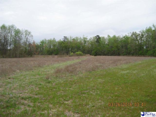 0 W Highway 378, Pamplico, SC 29583 (MLS #130613) :: RE/MAX Professionals
