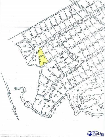 Lot 43 Nez Perce, Darlington, SC 29532 (MLS #132627) :: RE/MAX Professionals