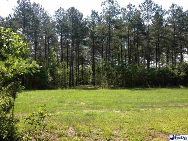 45 +/- acre Tract Hwy 177, Wallace, SC 29596 (MLS #134920) :: RE/MAX Professionals