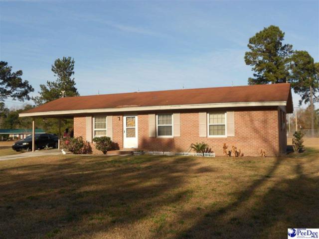 455 Diamond Branch Rd., Johnsonville, SC 29555 (MLS #134959) :: RE/MAX Professionals
