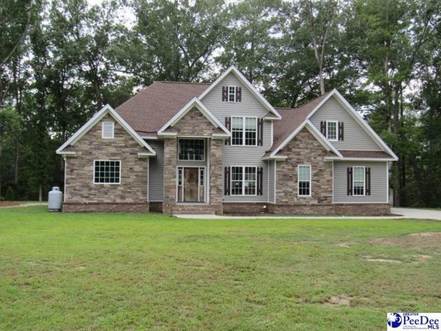 1037 Creekview, Darlington, SC 29540 (MLS #134976) :: RE/MAX Professionals
