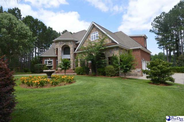 2555 Mossy Oak Drive, Hartsville, SC 29550 (MLS #135274) :: RE/MAX Professionals