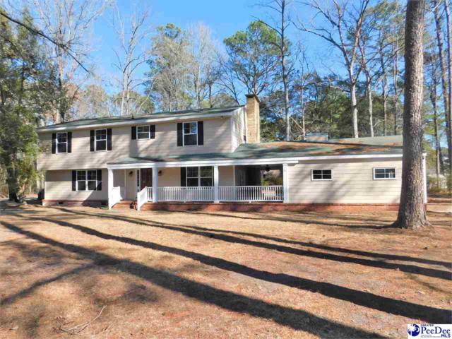 124 Alabama Drive, Darlington, SC 29532 (MLS #135297) :: RE/MAX Professionals