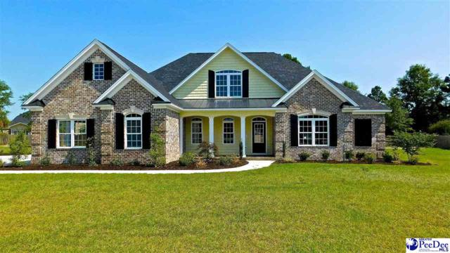 3005 Waterfowl Way, Florence, SC 29501 (MLS #136416) :: RE/MAX Professionals